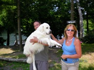dogster.com, pet friendly.ca, top rated pet friendly accommodation, pet friendly ontario, pet frienldy canada
